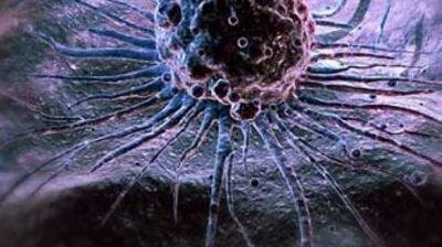 клеточные технологии